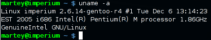 The command line in Gnome Terminal.