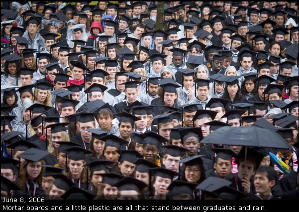 A picture of several members of the Harvard College Class of 2006 during morning exercises of Commencement.