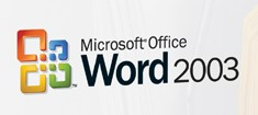 Closeup of the Microsoft Word logo from the Microsoft Word 2003 boxshot. Courtesy of www.microsoft.com.